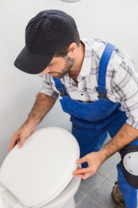 Fixing A Toilet Seat