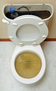 clogged Toilet with urine-chicago